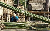 Bambus Produktion