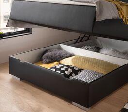 Bettkasten-Boxspringbett Merwins Bettkasten mit Gasdruckfedern
