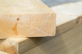 Kernholz Verwendung