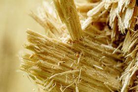 Kunstfasern Zellulosefasern Zellulose Grundstoff Holz