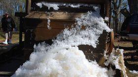 Naturfaser Baumwolle Ernte Entkörnung