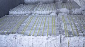 Naturfaser Baumwolle Rohware